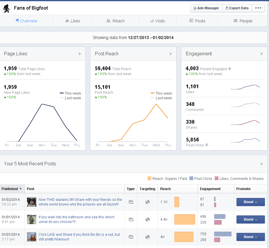 face3book business page insights